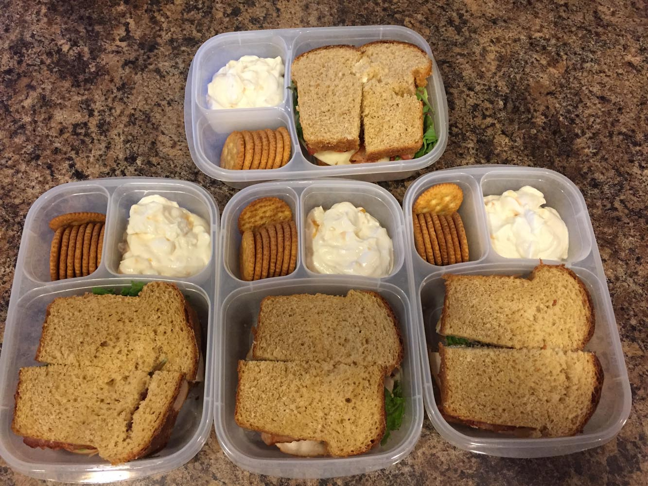 Turkey Sandwich with Crackers and Yogurt