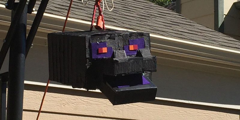 Minecraft Ender Dragon pinata